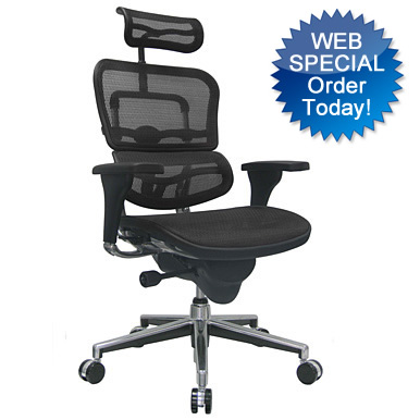 Ergohuman Mesh Office Chair - Office Furniture by KB